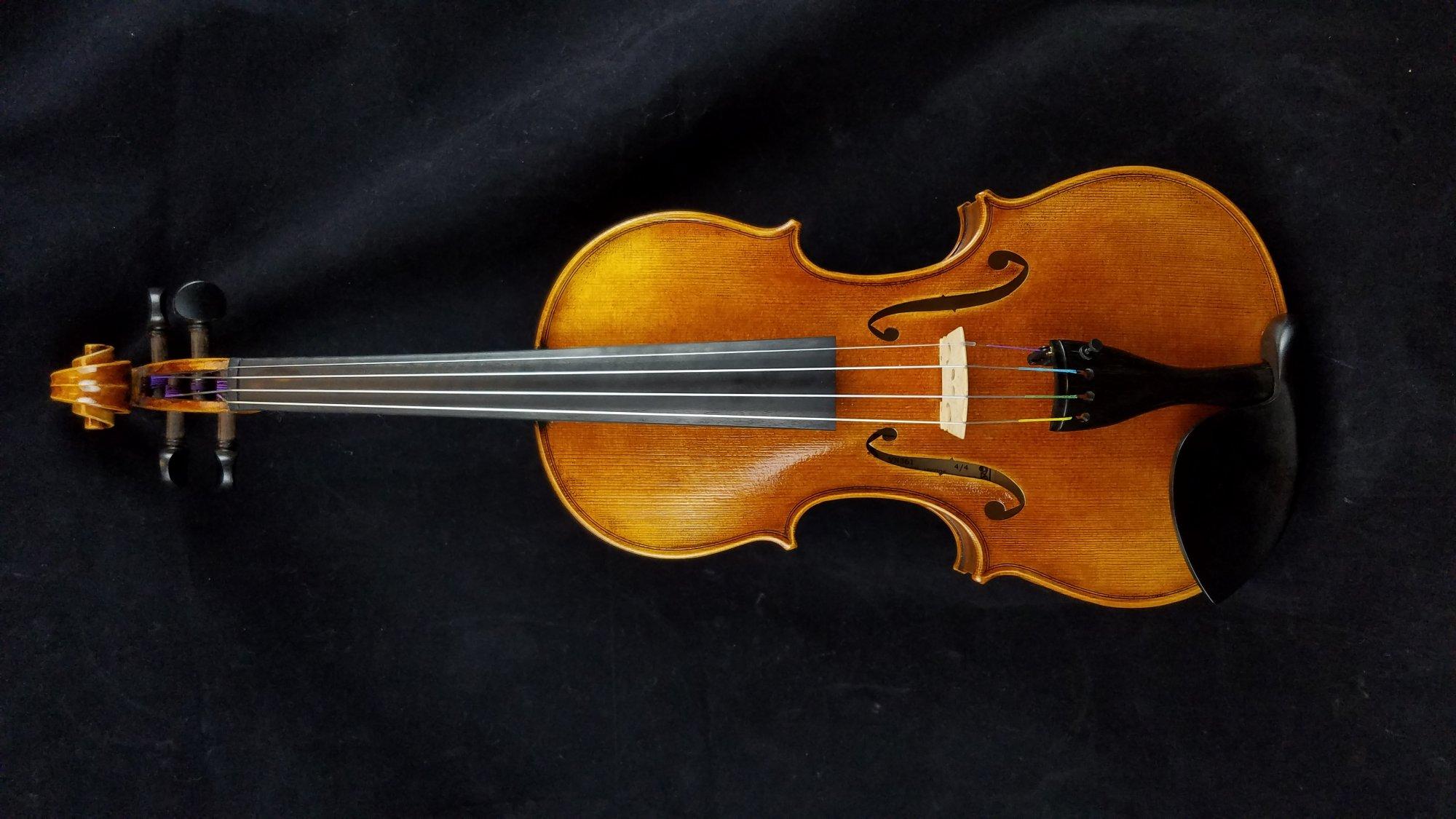 Pavia VN361 Violin