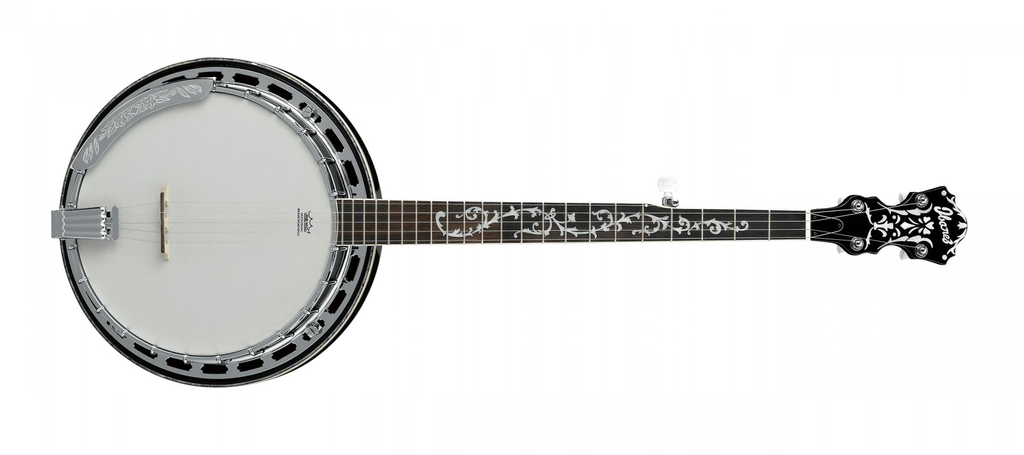 Ibanez B300 5 String Banjo