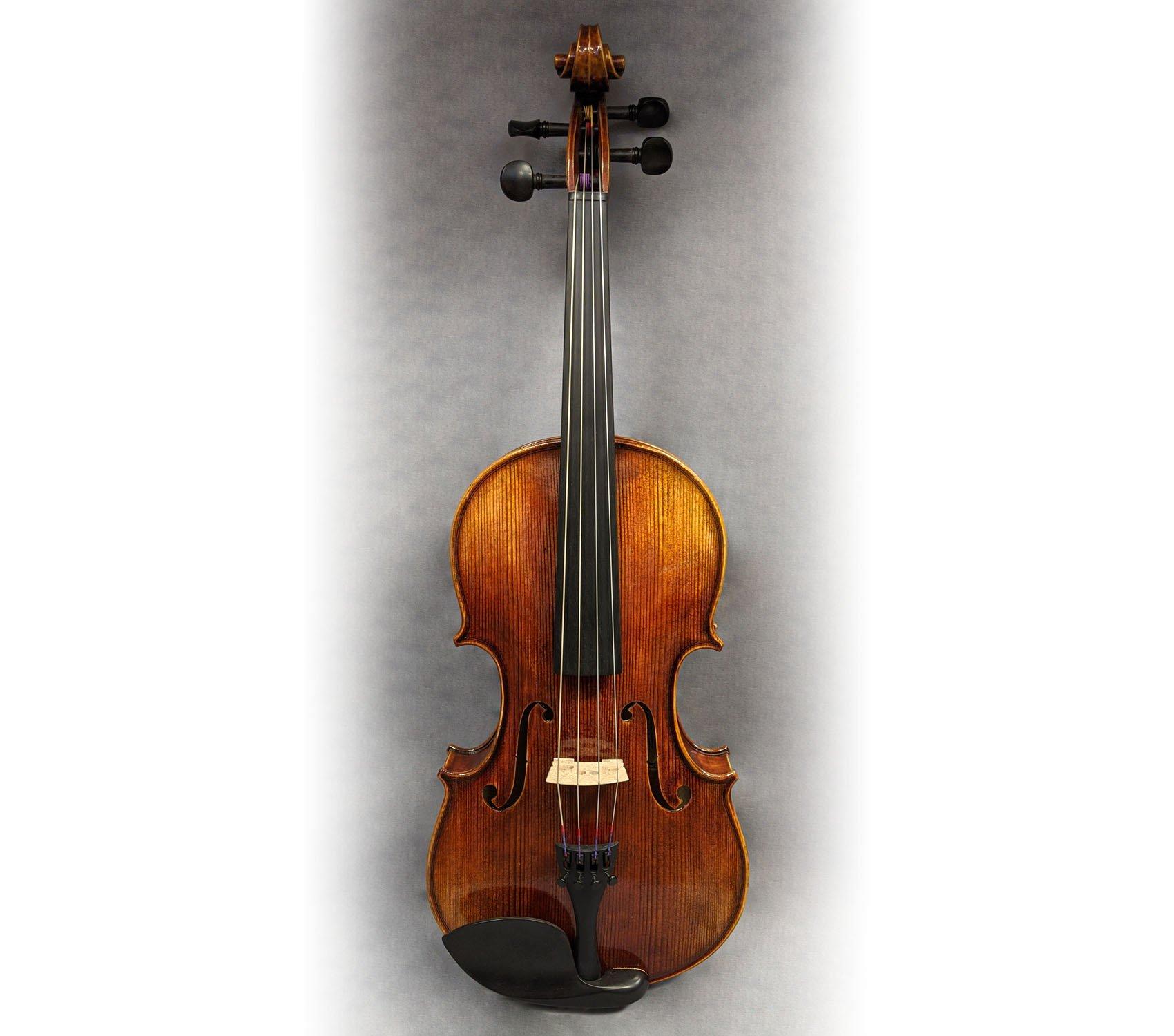 Pavia VA461 Viola, 15.5