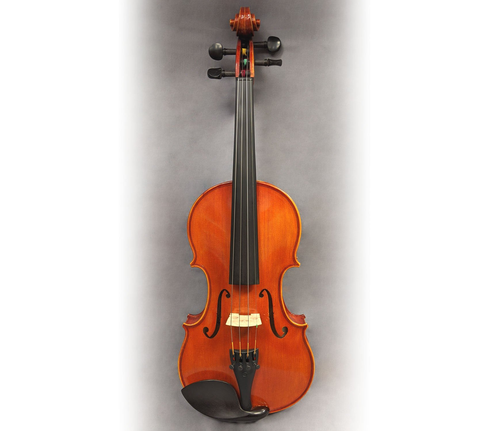 Pavia VN261 4/4 Violin Outfit