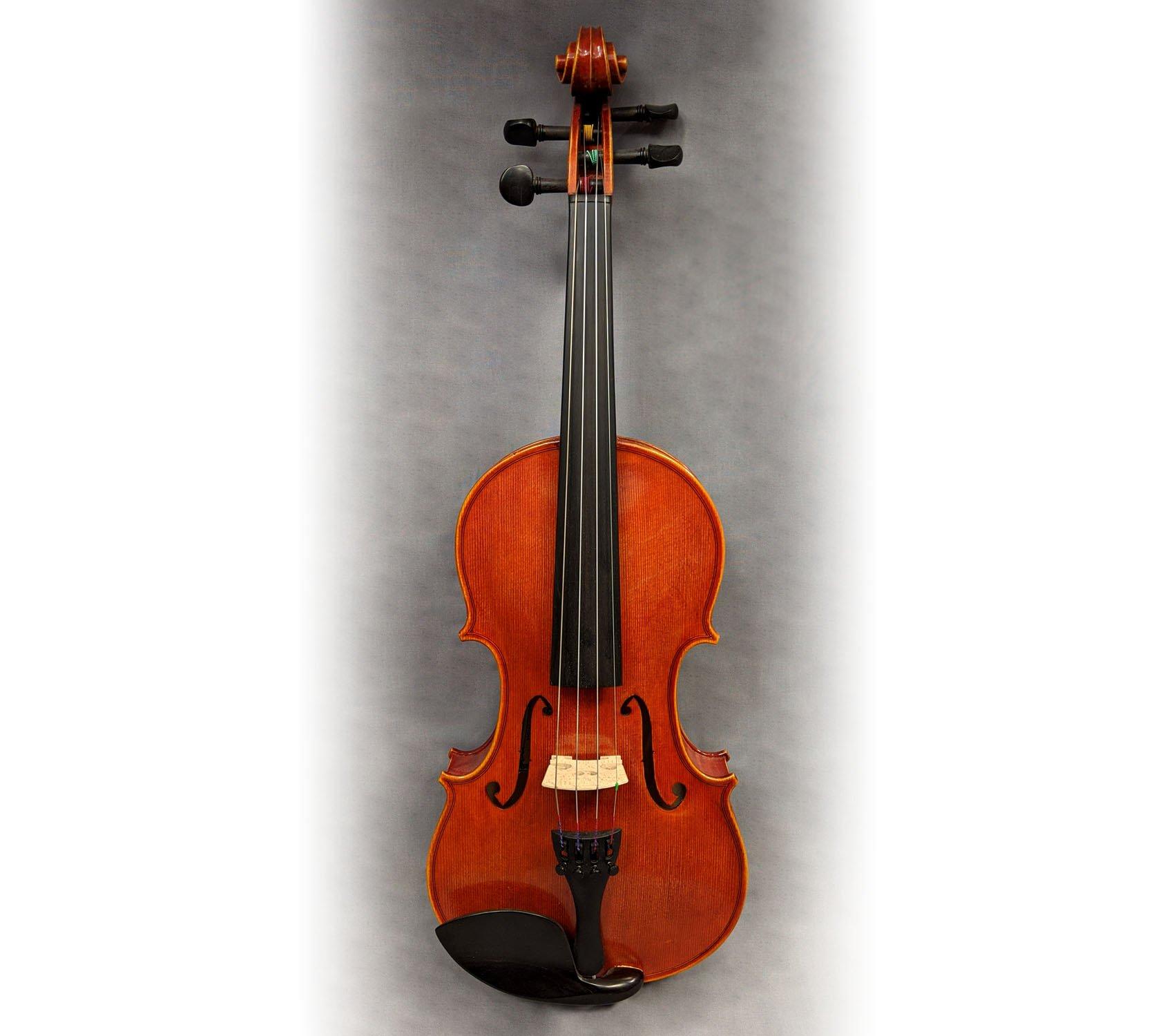 Pavia VN264 4/4 Violin Outfit