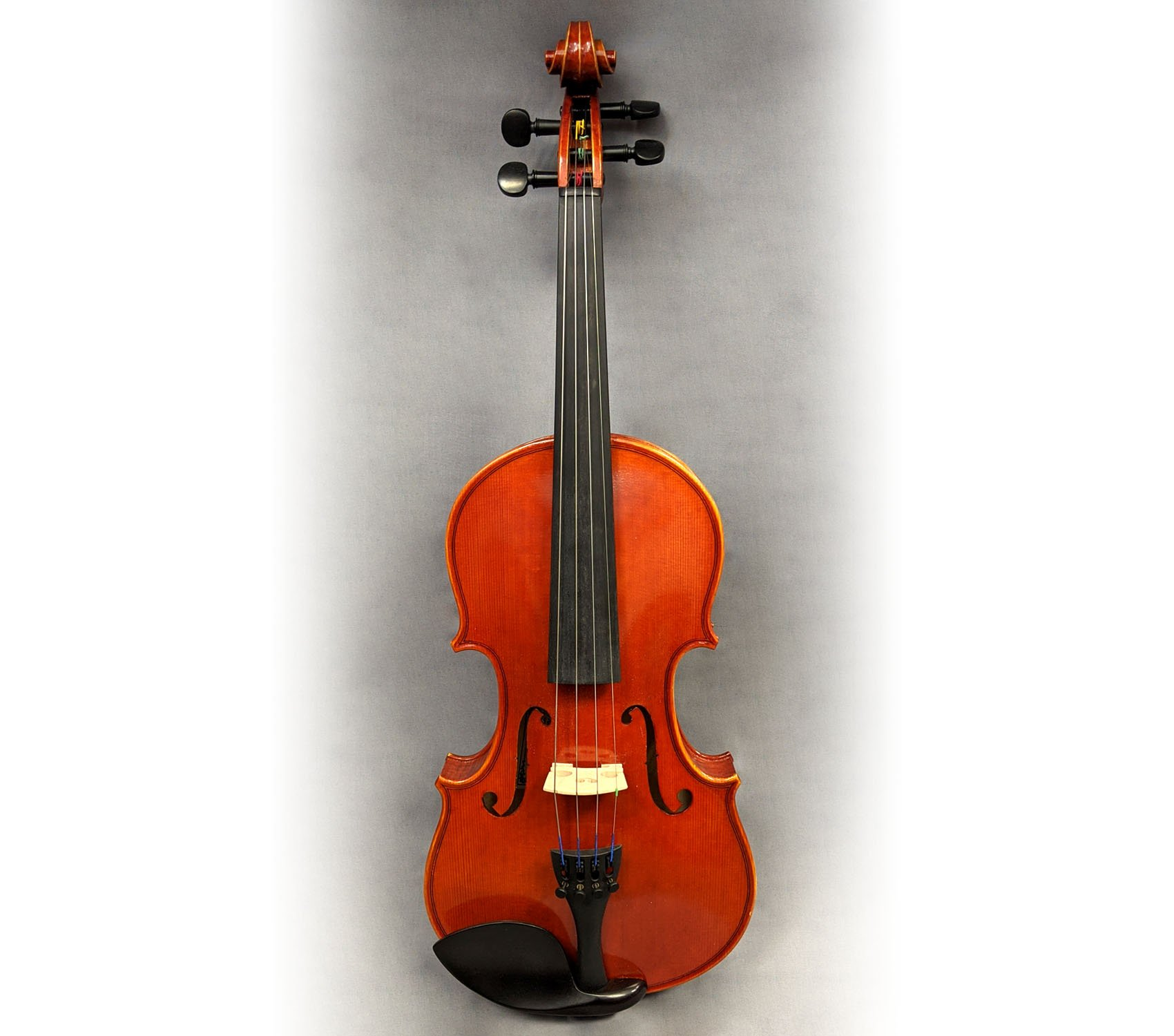 Pavia VN264P Violin 4/4 Outfit with Pegheds