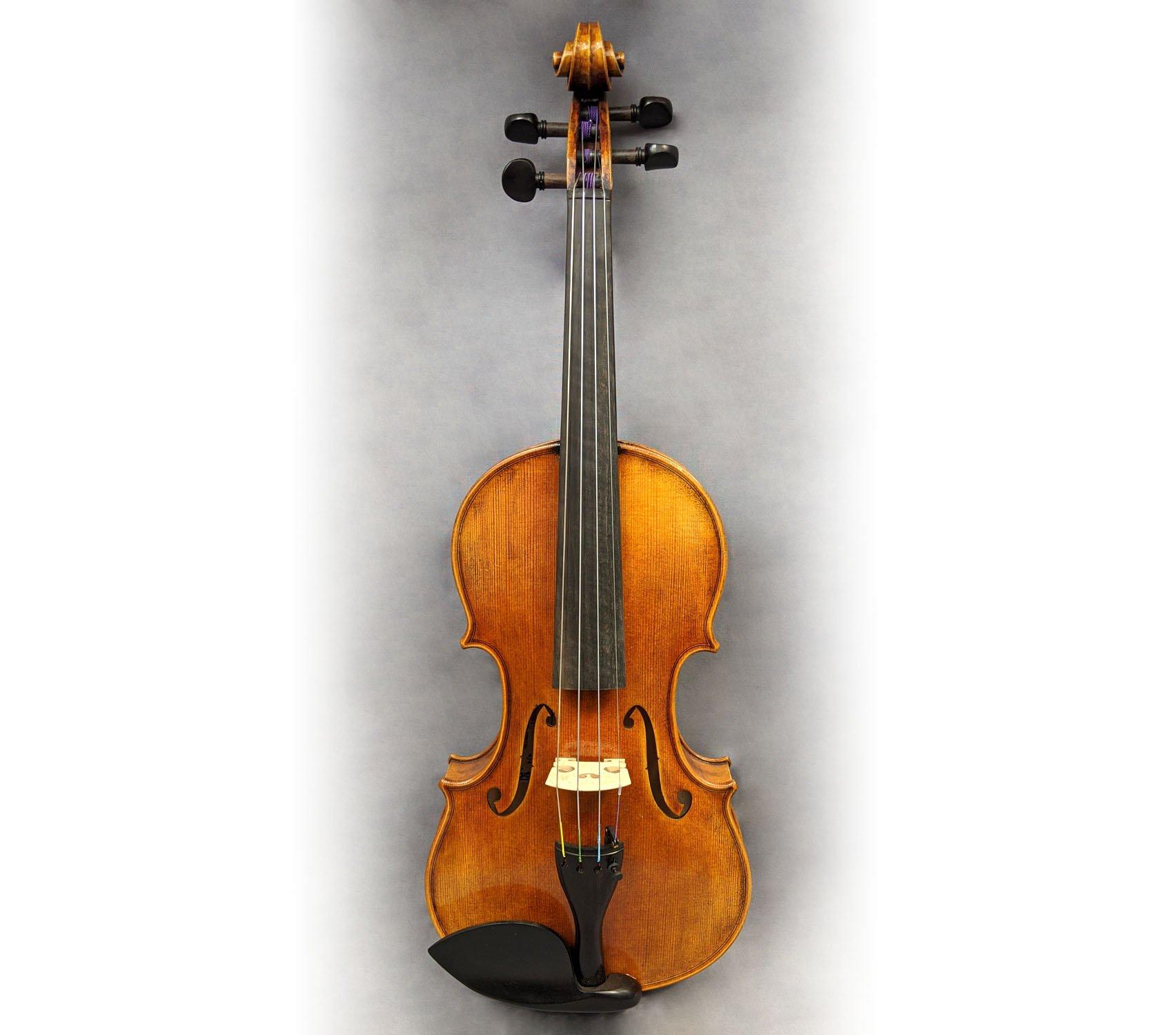 Pavia VN361 4/4 Violin