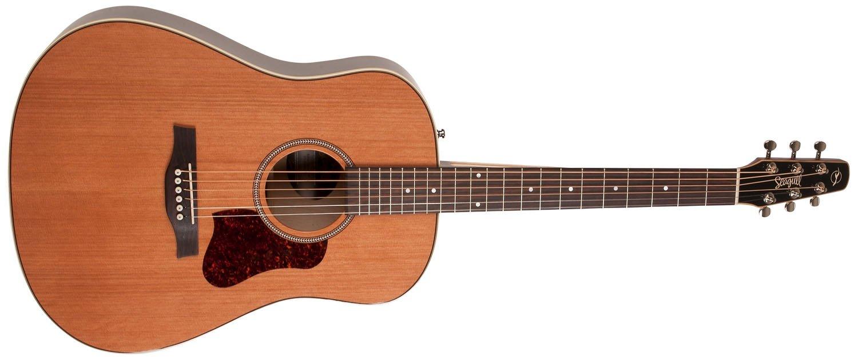 Seagull Coastline Momentum HG A/E Acoustic Guitar