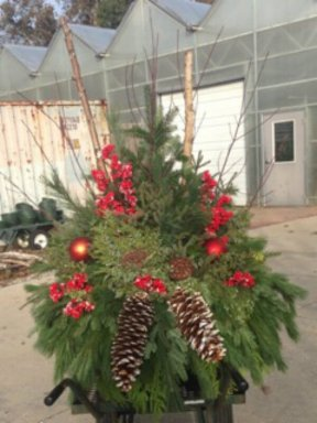 Big Christmas Greens Container