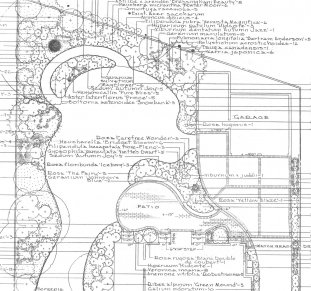 landscape garden design by Anthony Tyznik