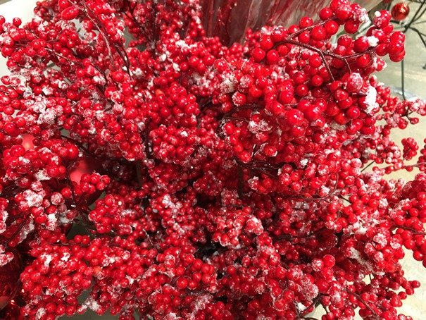 Red Ice berries