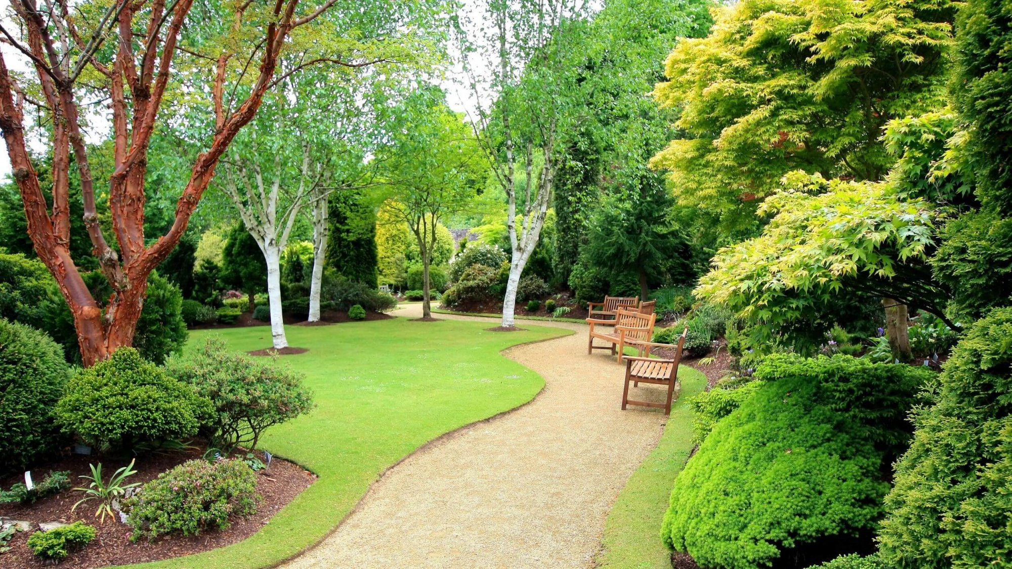 Garden with trees and benches