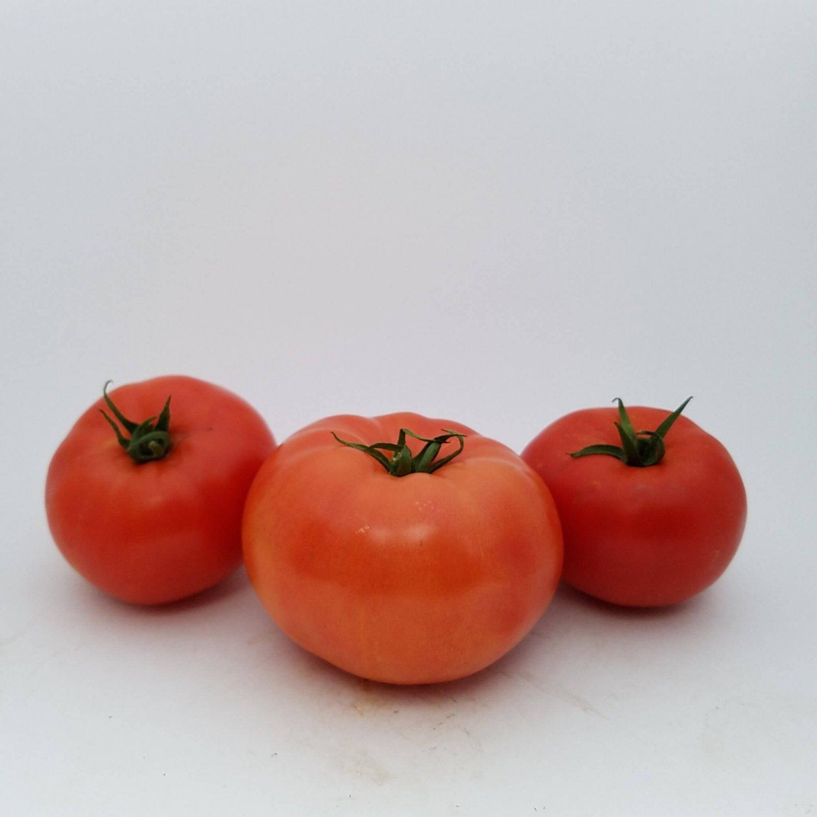 Bigdena Tomato - per pound Grown hydroponically