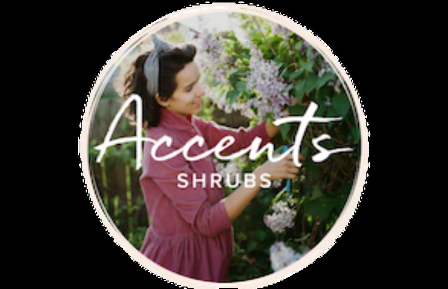 Lady pruning a shrub