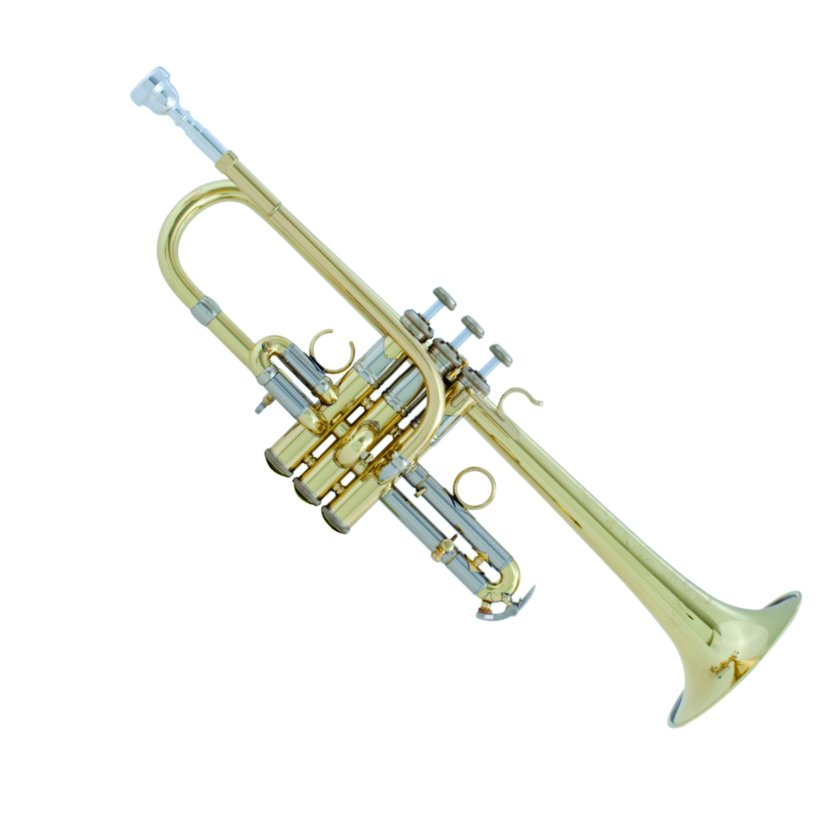 BACH AE/ADE 190 Professional Specialty Trumpet