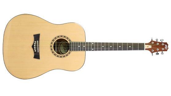PEAVEY DW-1 Acoustic Guitar