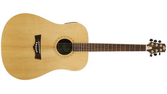 PEAVEY DW-3 Acoustic Guitar