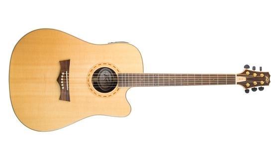 PEAVEY DW-4 CE Acoustic/Electric