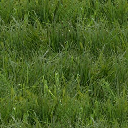 Green Grass 250E-GRN