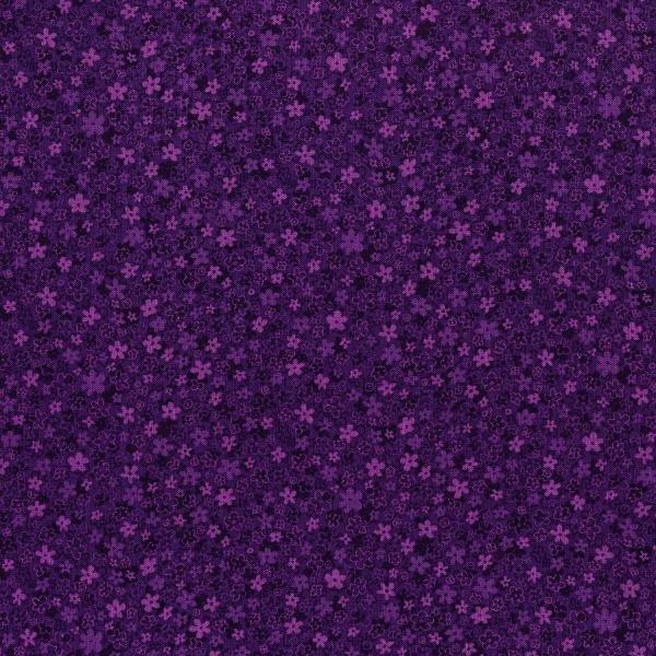 HS First-Grape 3220-005