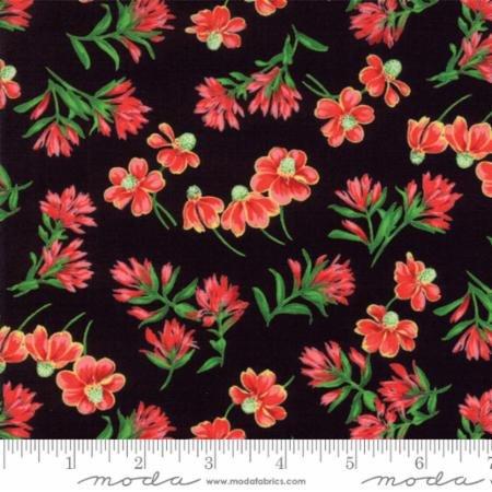 Wildflowers VIII Black-33222/19