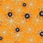 Chills & Thrills- Spiders