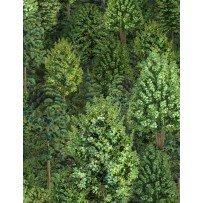 Bear Meadow-1427/94754/773