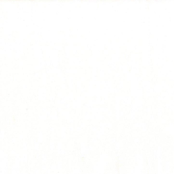 Cotton Couture-Bright White-SC5333-BRWHT