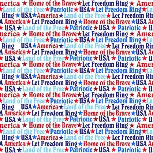 Studio e America Home of the Brave White w/Words