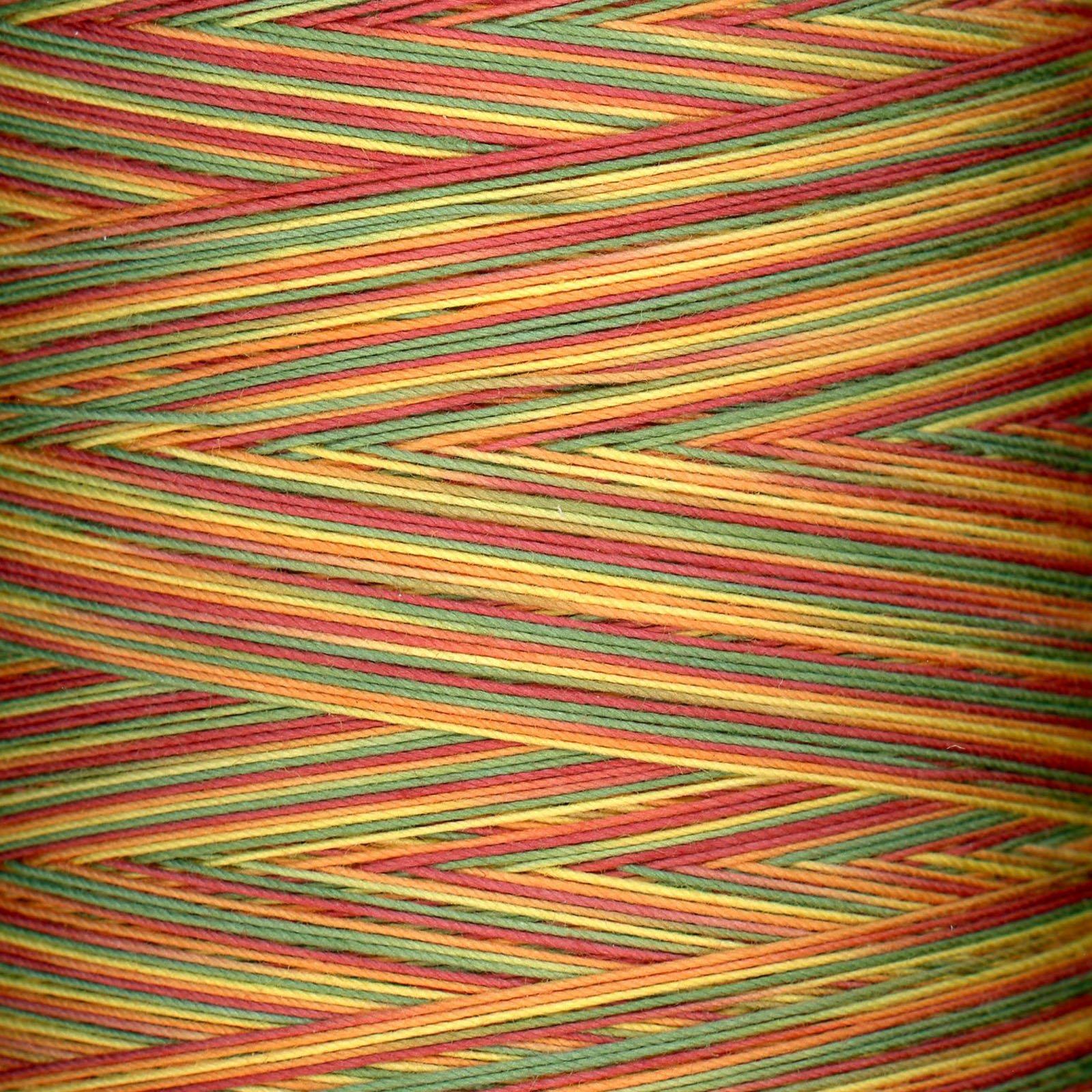 King Tut Variegated Thread #906