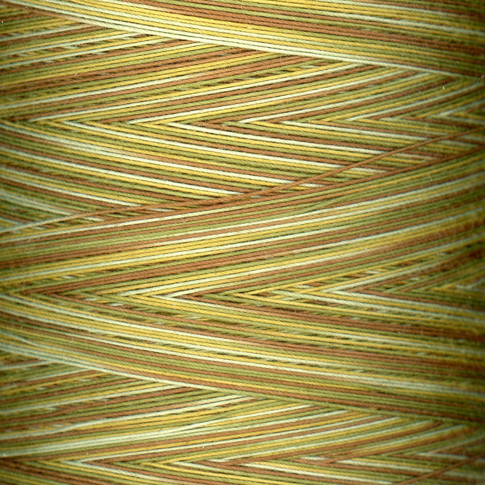 King Tut Variegated Thread #910