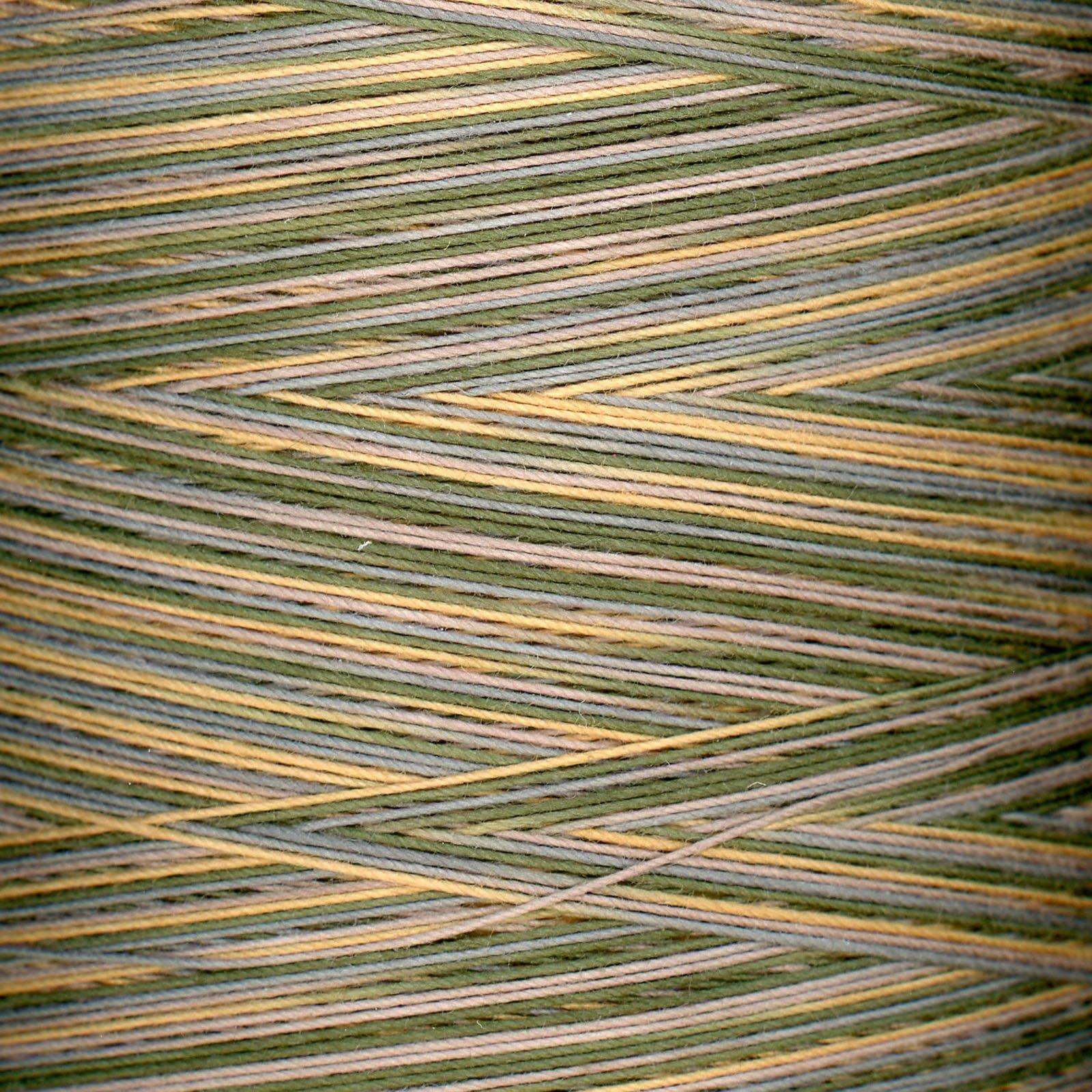 King Tut Variegated Thread #925