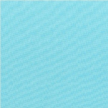 Windham Fabrics Artisan Solid (Aqua/White)