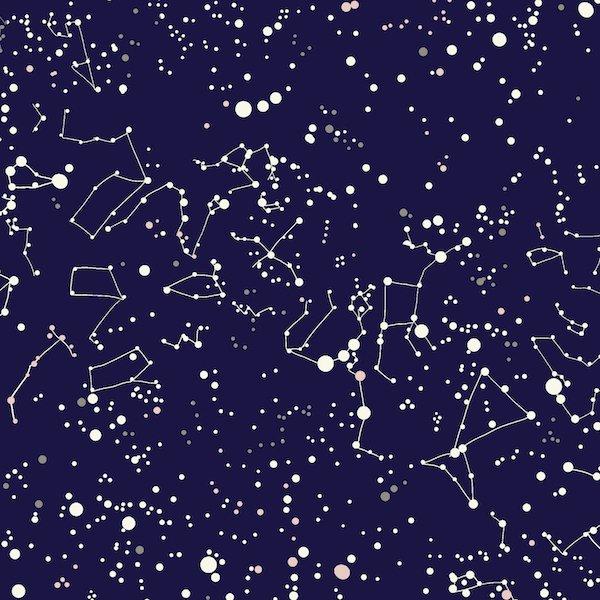 Heather Givans Night Hike - Constellations (Midnight)