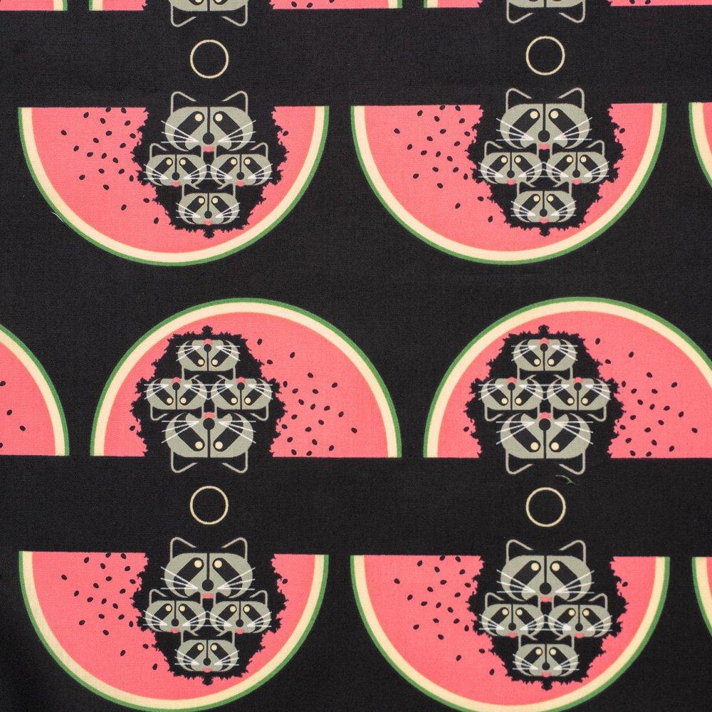 Charley Harper Cats & Raccs - Watermelon Moon