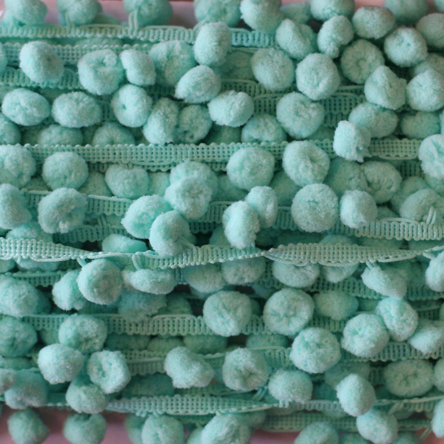 1 Pom Pom Fringe (Aqua)