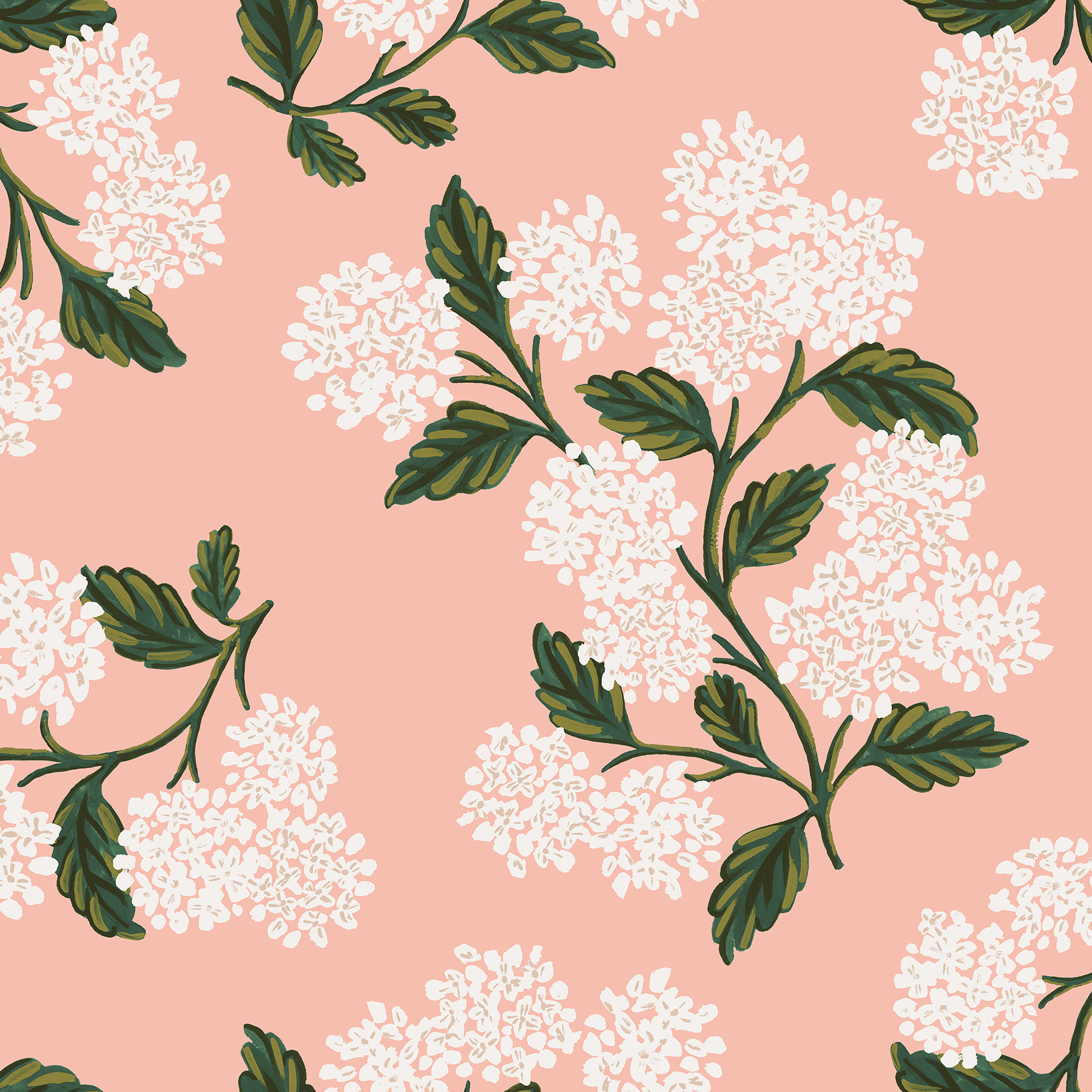 Rifle Paper Meadow - Hydrangea (Blush)