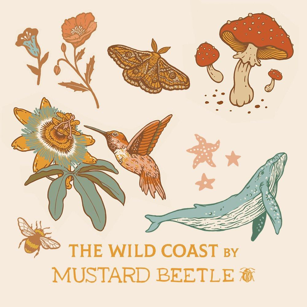 Coming Soon! Wild Coast by Mustard Beetle