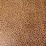 0224213 Cork Fabric Jungle 13x18