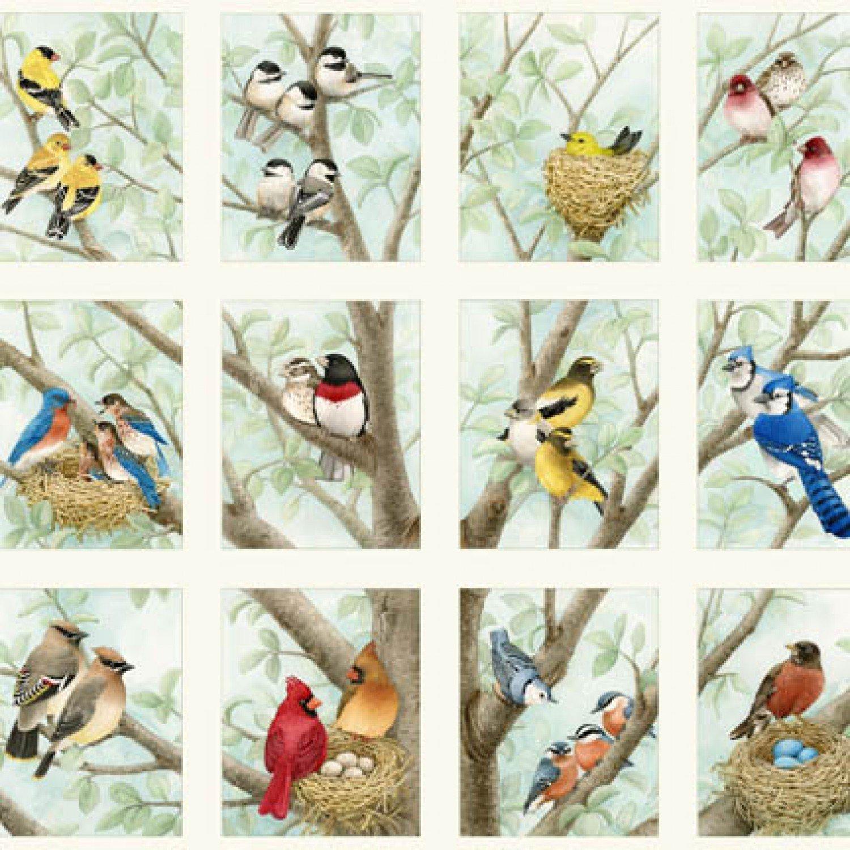 Beautiful Birds Panel - 4309 cream