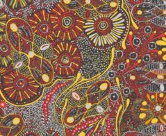 Aboriginal Bush Tucker After Rain - Red