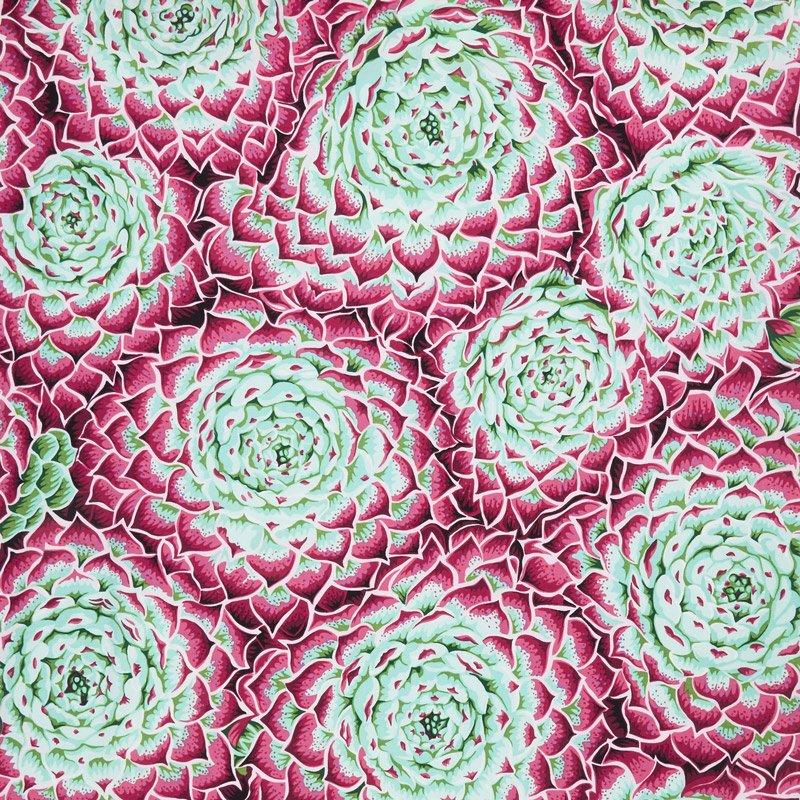 Kaffe Fassett - Spring 2018 - Succulent - Pink