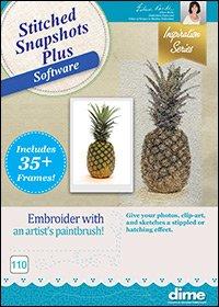 Stitched Snapshots Plus Software