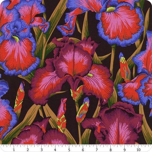 Bearded Iris- Dark PWPJ105.DARK