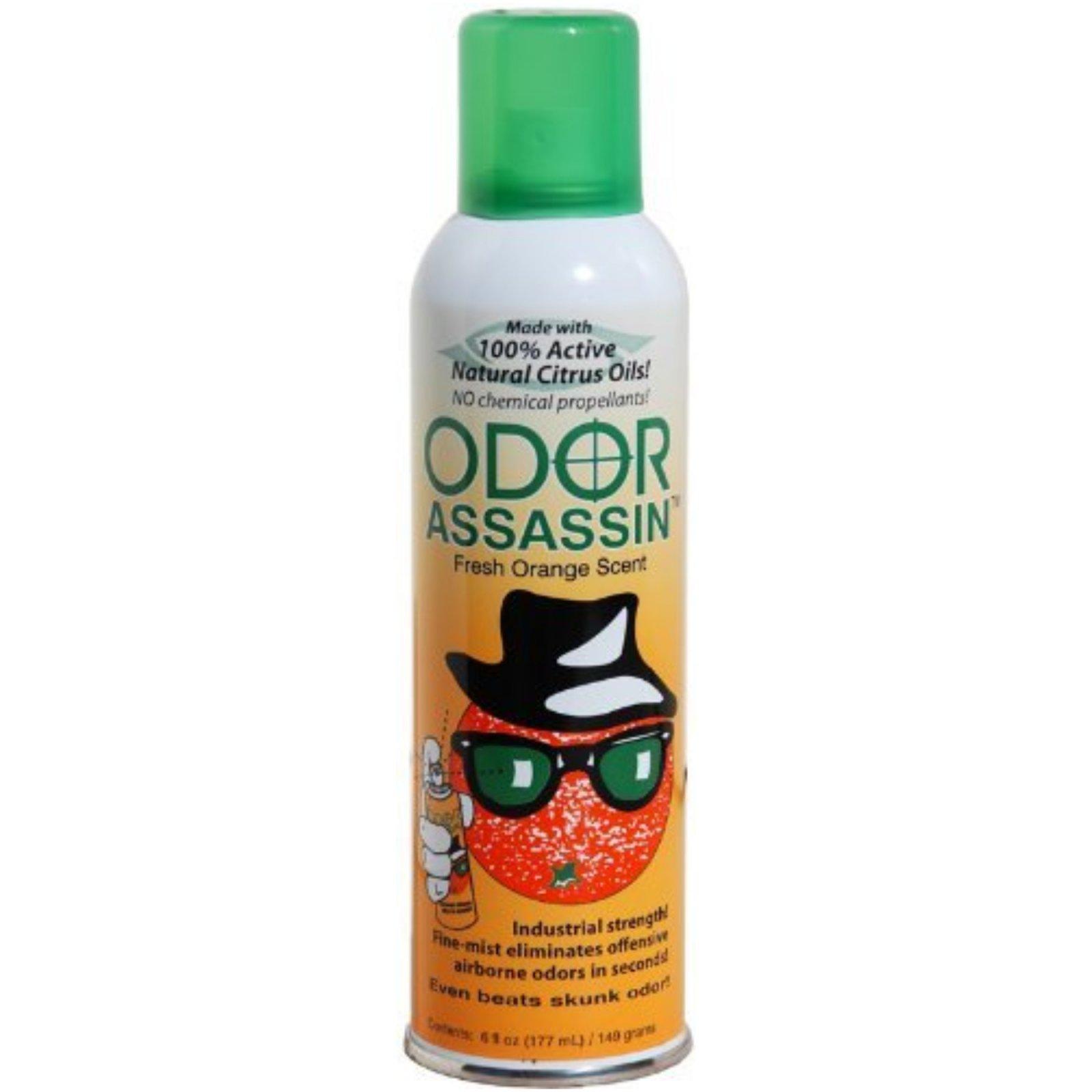 ODOR ASSASSIN - Fresh Orange