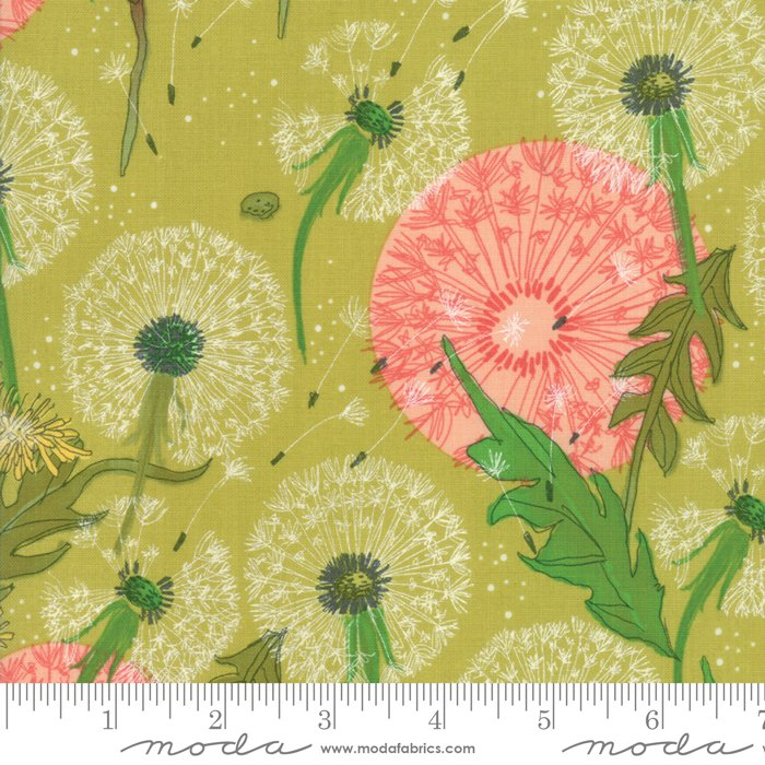 Dandilion Dance Leaf - Dandi Annie - Robin Pickins