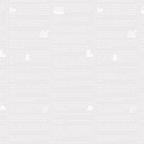 Dictionary white on white - Fine Print - Brenda Ratliff