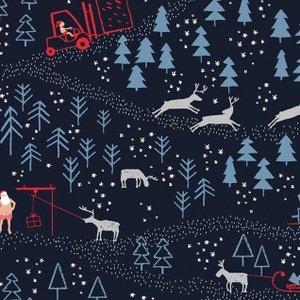 North Pole After Dark - Dear Stella
