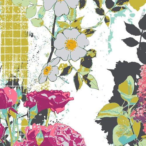 Framework Albarise - Grid - Katarina Rocella