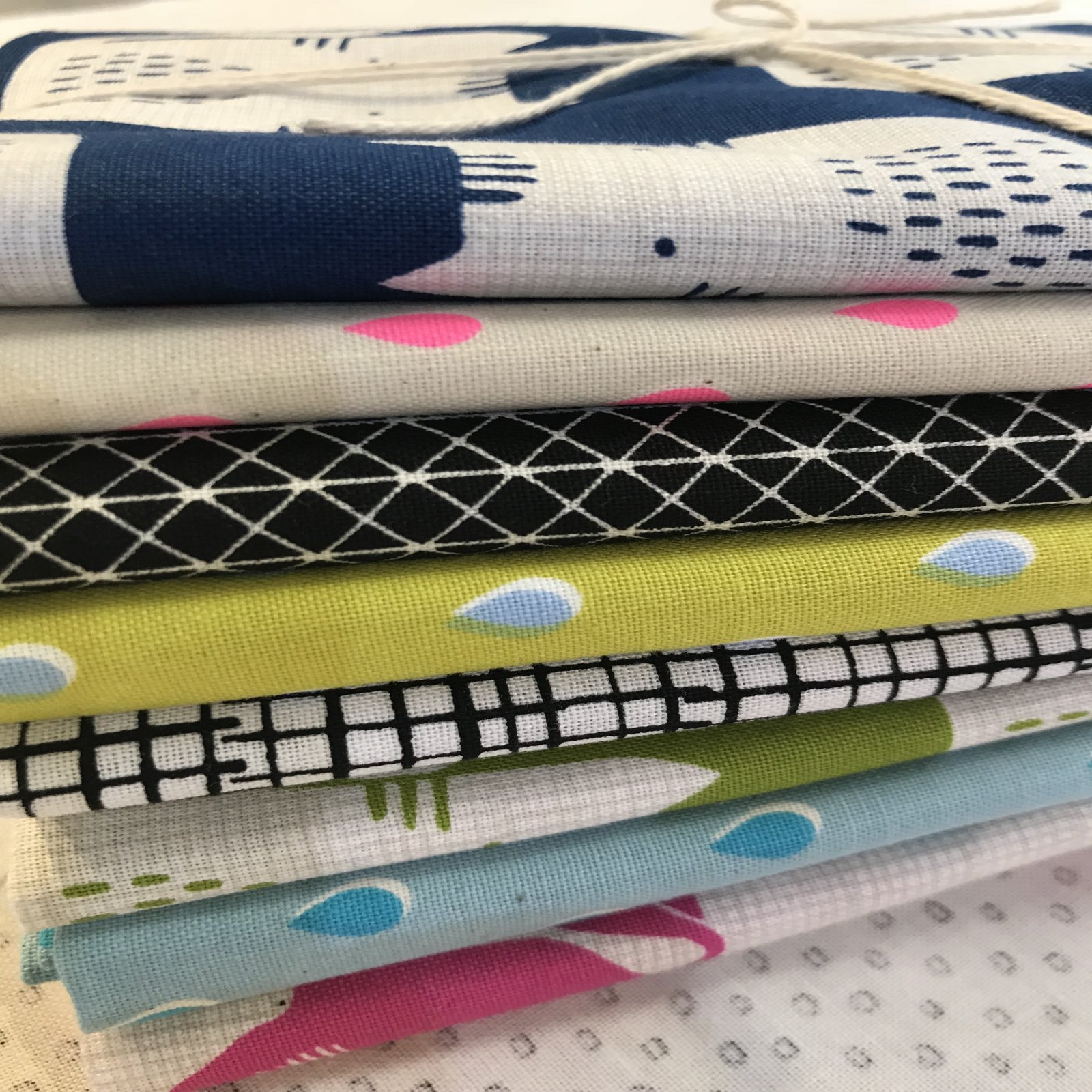 Raining Cats and Dogs Fat Quarter Bundle