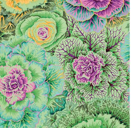 Brassica Moss - Classic - Phillip Jacobs