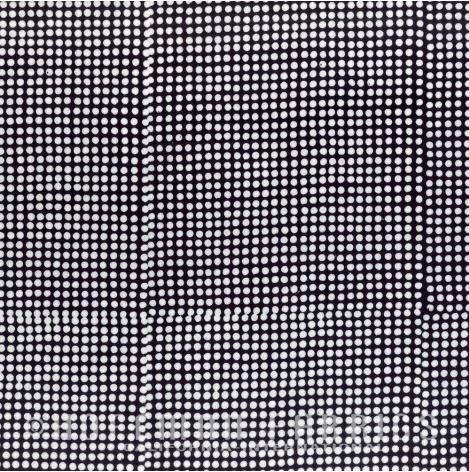 Dots Zebra - Me + You - Hoffman
