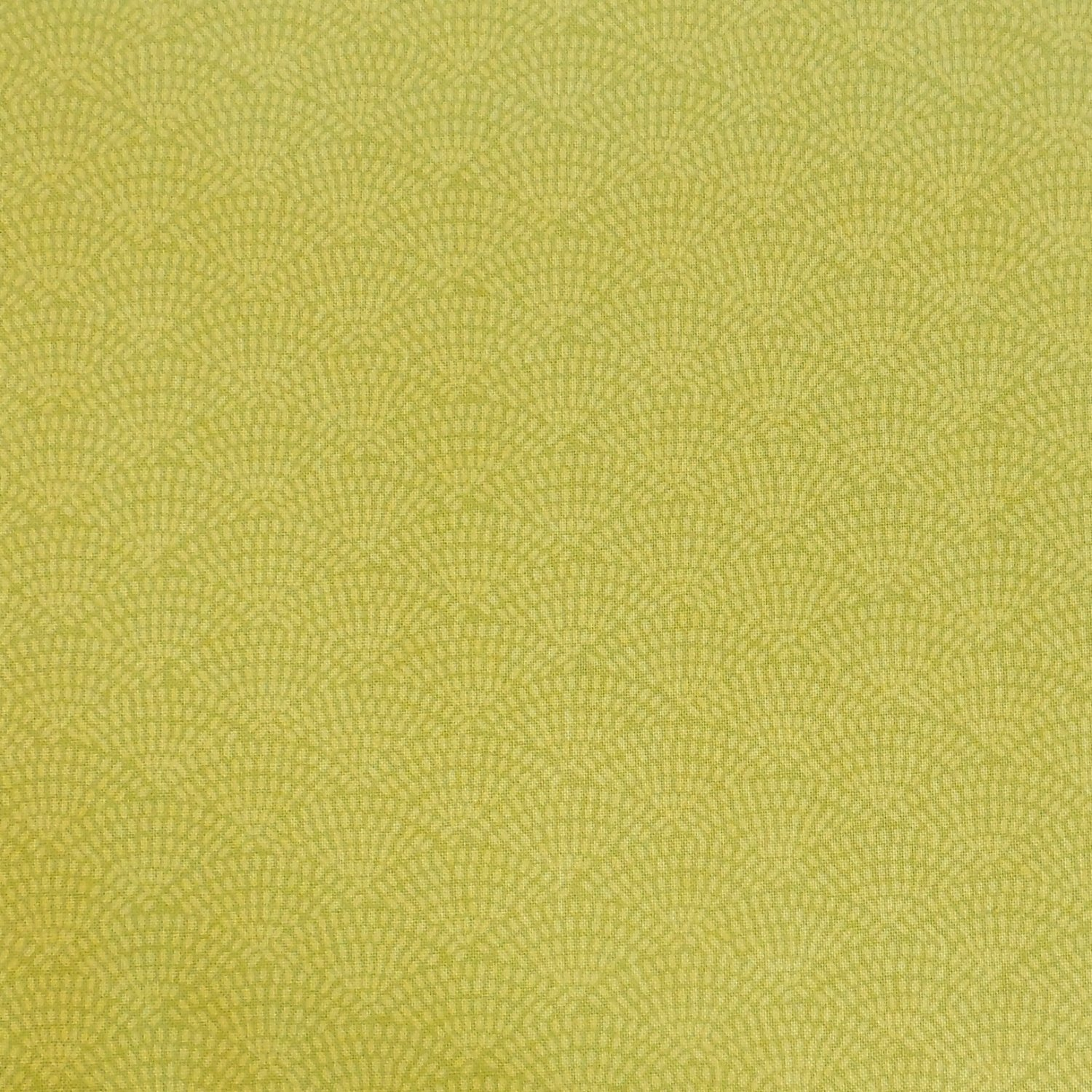 Timeless Treasures Fun Citron Quilting Fabric C5100