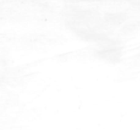 Wholecloth BACKING White 108 x 120